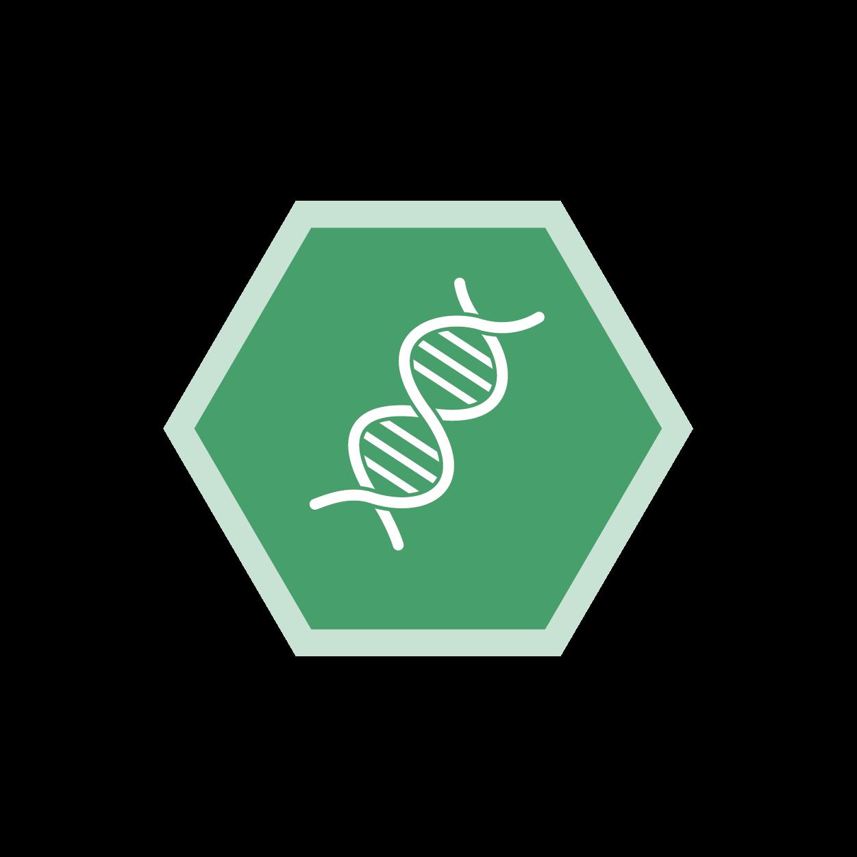 Humangenetik, Medat Laborinformationssystem