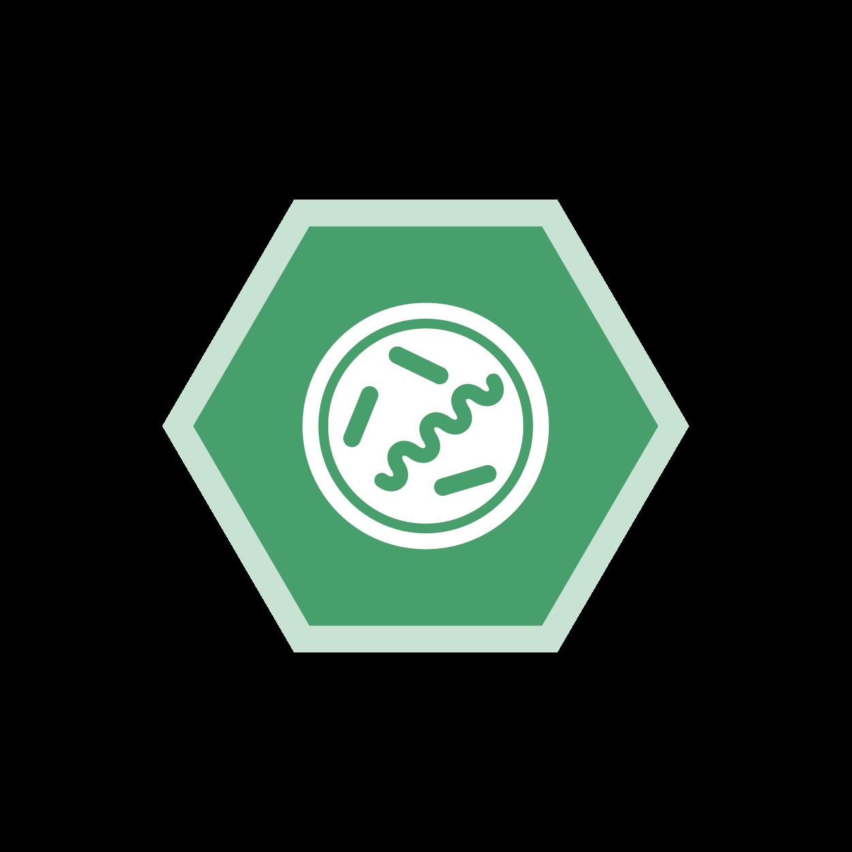 Mikrobiologie, Medat Laborinformationssystem